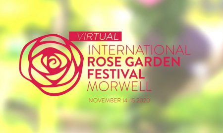 International Rose Festival